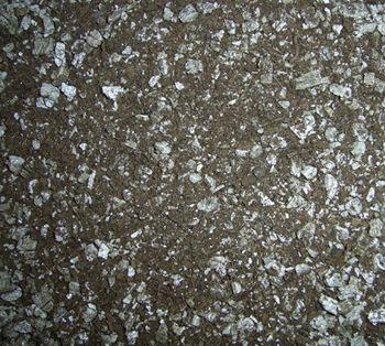 شوری خاک پوششی